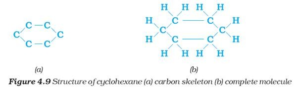 Chemistry X   Carbon and its Compounds   Chains  Branches